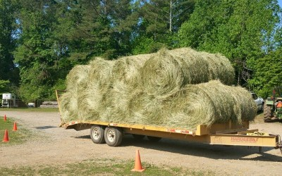 Roundbales of Hay on Trailer