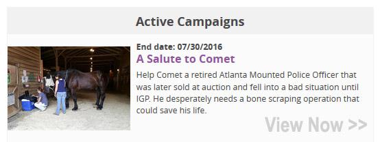 Comet Fundraising Campaign