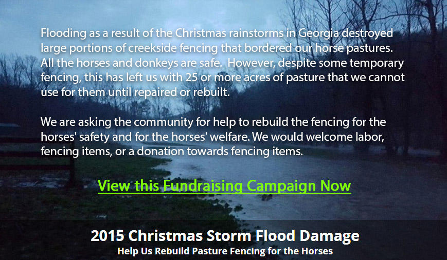 Flood Damage Campaign